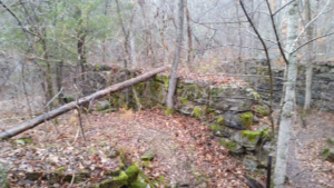 Foundation of an 1800's paper plant.